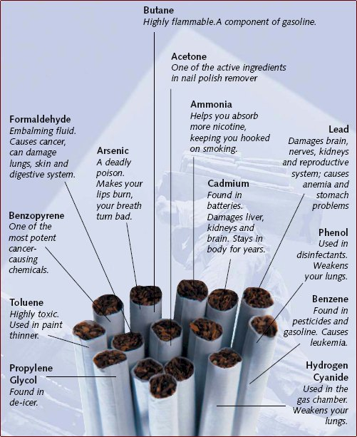 Harmful Ingredients in Cigarettes