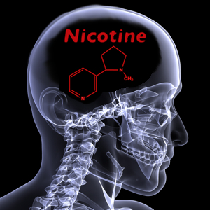 Xray of head with red nicotine molecule on it.