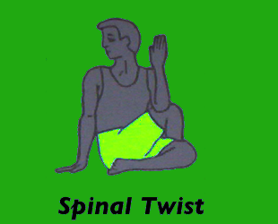 Yoga Spinal Twist Pose
