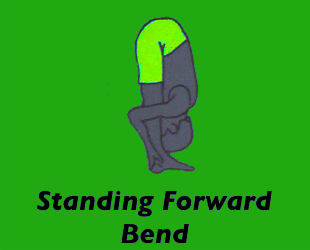 Yoga Standing Forward Bend Pose
